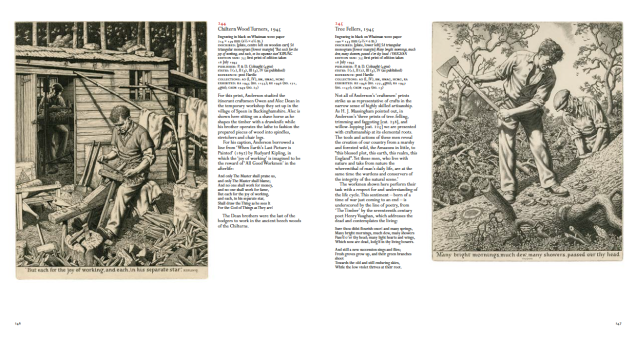 Sample page from Meyrick and Heuser's catalogue