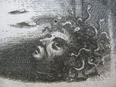 hollar-medusa