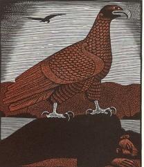 Eagle from Harry Brockway: The Story of Heledd ©Gwasg Gregynog