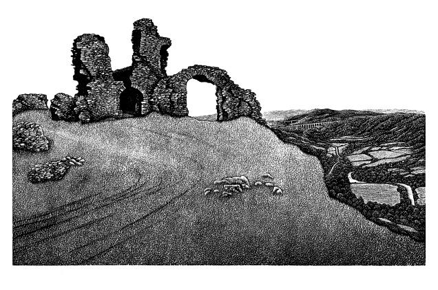 Hilary Paynter Castell Dinas Bran copy