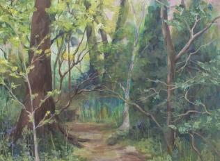 Penglais Wood III, Carmel Reid, 44 x 60 cm, June 2018
