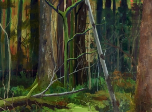 Ystwyth Forest, Carmel Reid, 44 x 60 cm, January 2018
