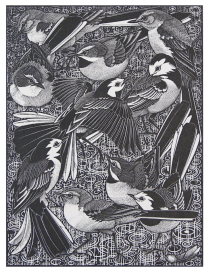 Walk of Wagtails, Of a Feather - An Avian Alphabet, Colin See-Paynton