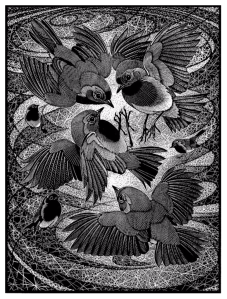 Iracibility of Robins, Of a Feather - an Avian Alphabet, Colin See-Paynton