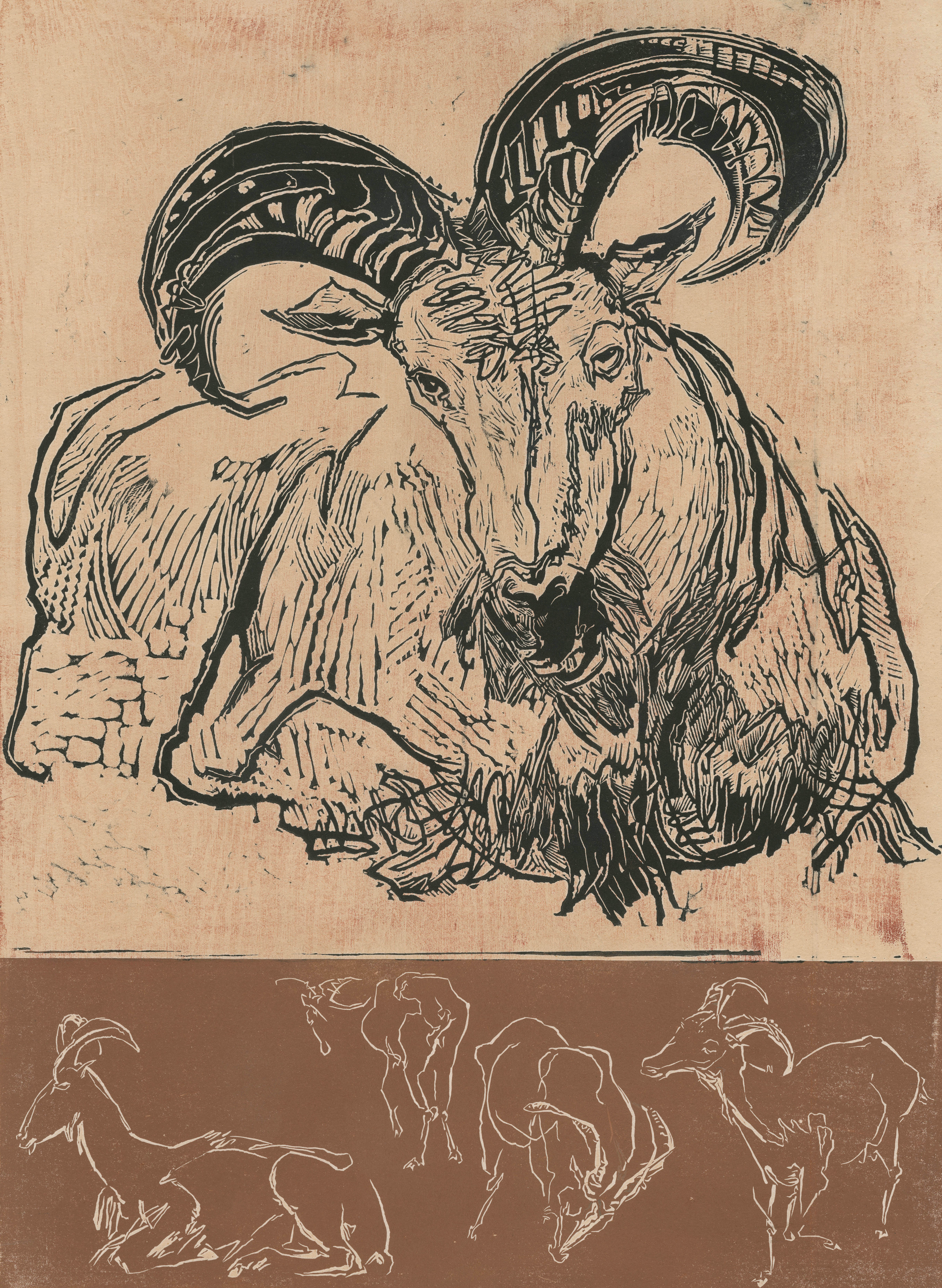 A resting ram and three smaller images of a ram in various positions